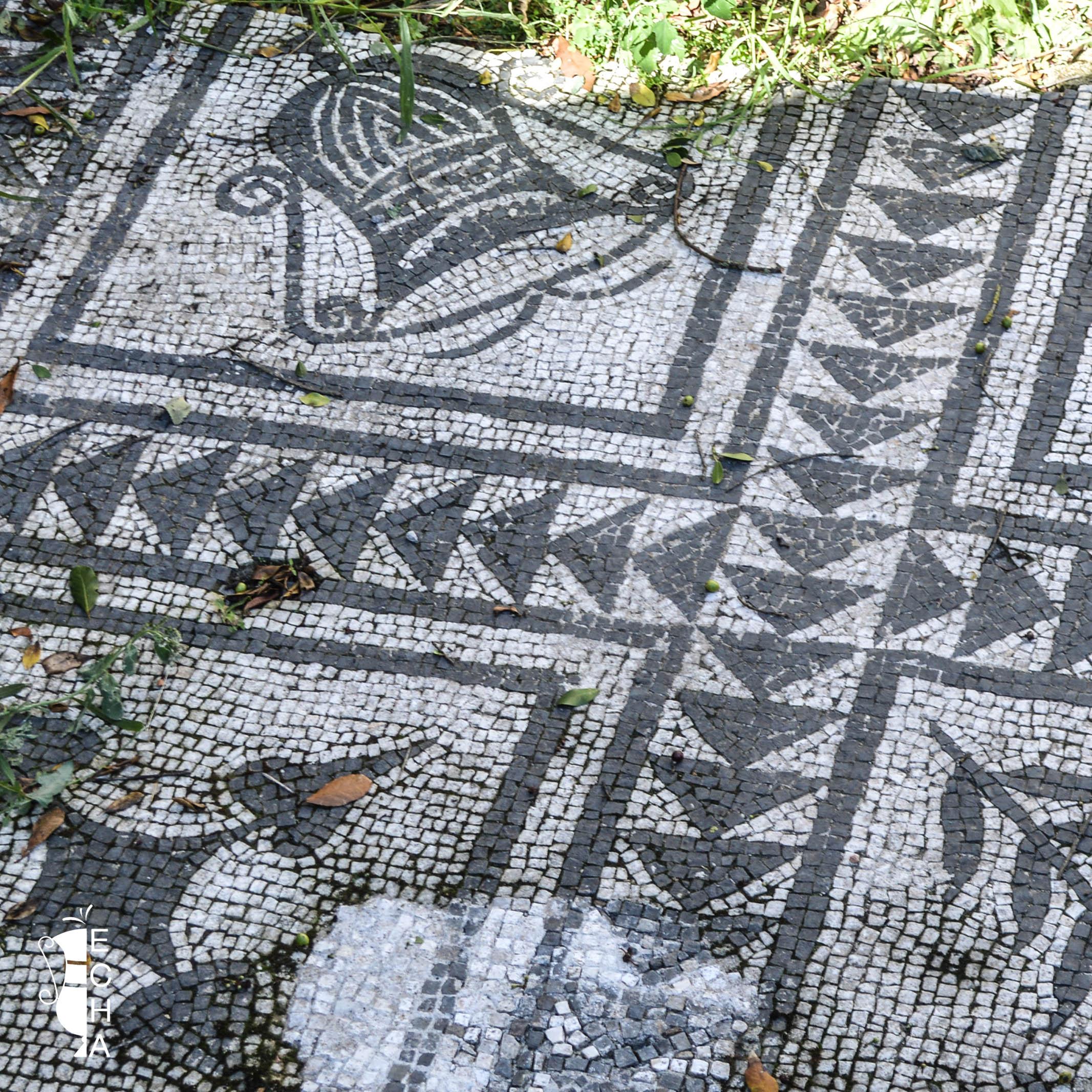 Aspetto archeologico 5